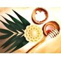 Savon Maya au miel & cire d'abeille